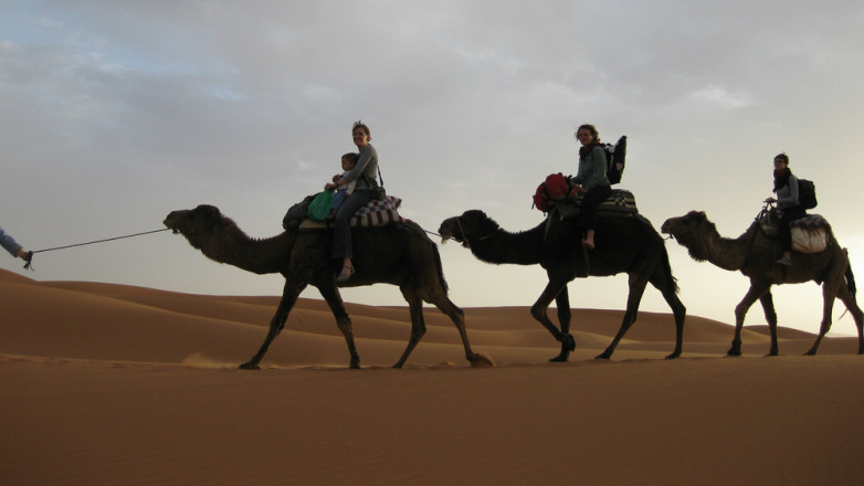 people on 3 camels in walking in line over sand